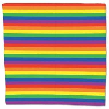 Regenboog zakdoek